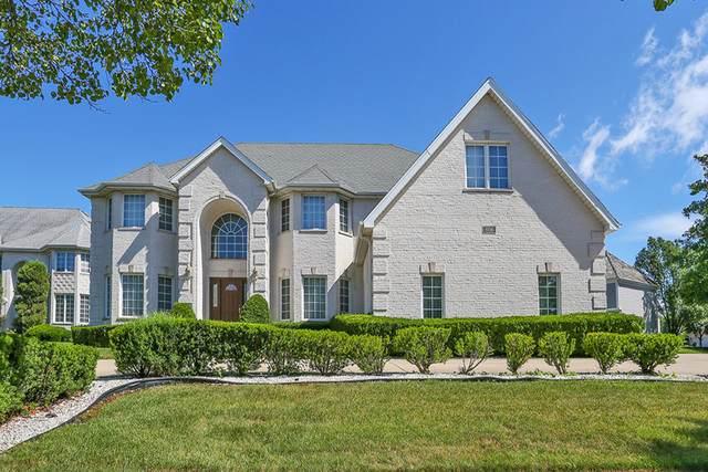806 Tory Court, Schaumburg, IL 60173 (MLS #10779685) :: John Lyons Real Estate
