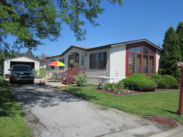 32 Swan Lane, Beecher, IL 60401 (MLS #10779947) :: Ryan Dallas Real Estate