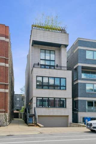 1823 N Halsted Street #1, Chicago, IL 60614 (MLS #10780068) :: John Lyons Real Estate