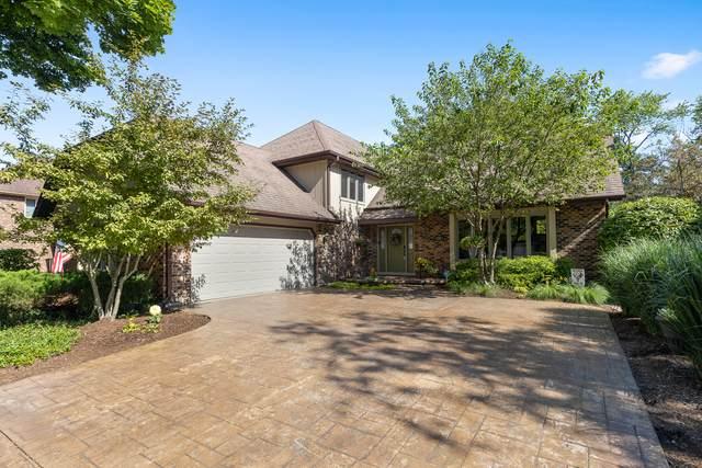 729 E Bauer Road, Naperville, IL 60563 (MLS #10780420) :: Ryan Dallas Real Estate