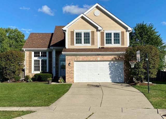 210 Biscayne Court, Bloomingdale, IL 60108 (MLS #10780422) :: Ryan Dallas Real Estate