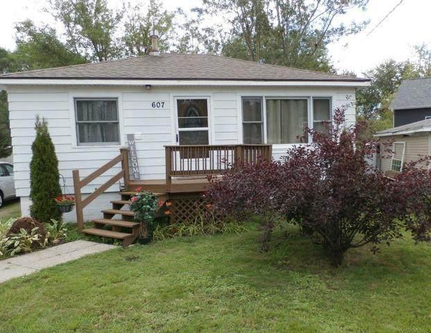 607 Oak Lane, Ingleside, IL 60041 (MLS #10780480) :: Ryan Dallas Real Estate