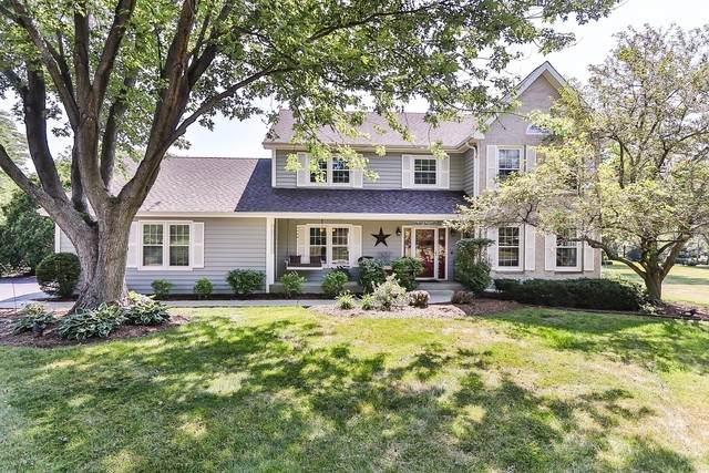 139 Deer Valley Drive, Deer Park, IL 60010 (MLS #10780529) :: Ryan Dallas Real Estate