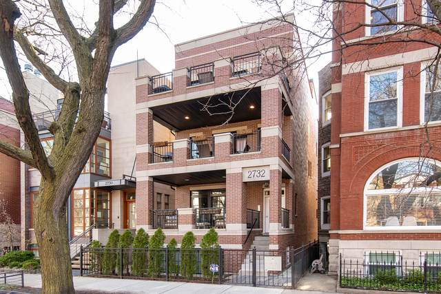 2732 N Seminary Avenue #2, Chicago, IL 60614 (MLS #10780640) :: John Lyons Real Estate