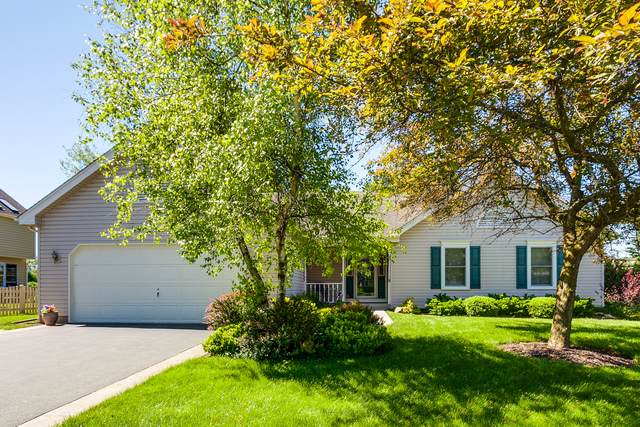 317 Wooded Knoll Drive, Cary, IL 60013 (MLS #10780795) :: Lewke Partners