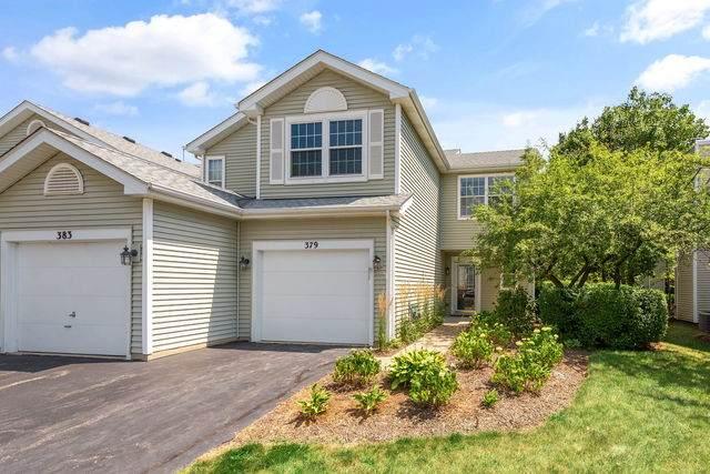 379 Maidstone Court, Schaumburg, IL 60194 (MLS #10780829) :: John Lyons Real Estate