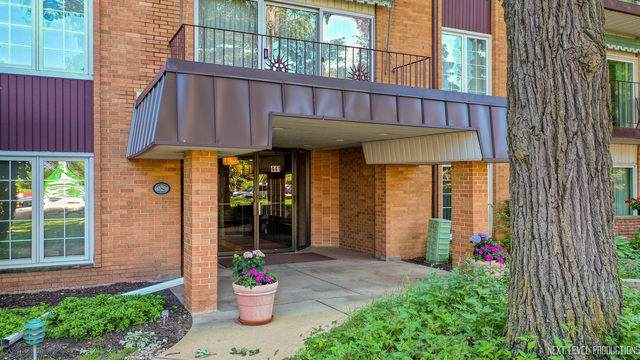 441 N Park Boulevard 2I, Glen Ellyn, IL 60137 (MLS #10781959) :: Angela Walker Homes Real Estate Group