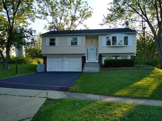 230 Covington Place, Schaumburg, IL 60194 (MLS #10781976) :: Littlefield Group