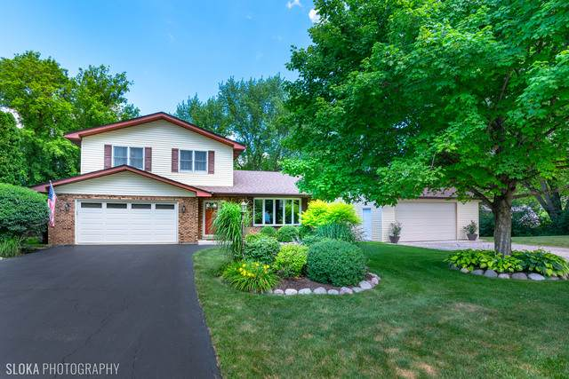 27869 N Lakeview Circle, Mchenry, IL 60051 (MLS #10781997) :: Ani Real Estate