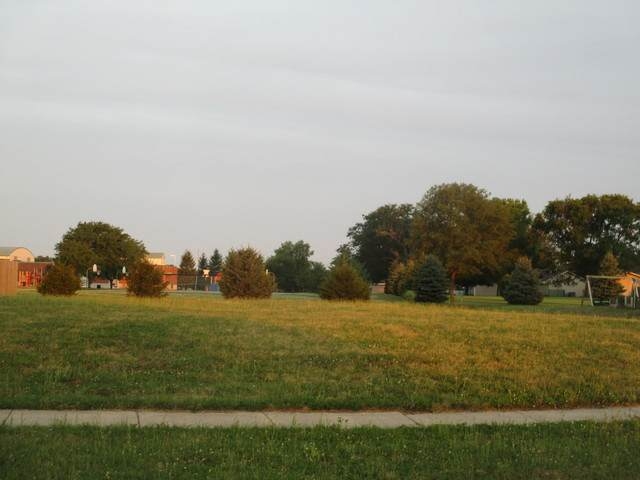 114 Wilshire Drive, Tuscola, IL 61953 (MLS #10782059) :: Suburban Life Realty