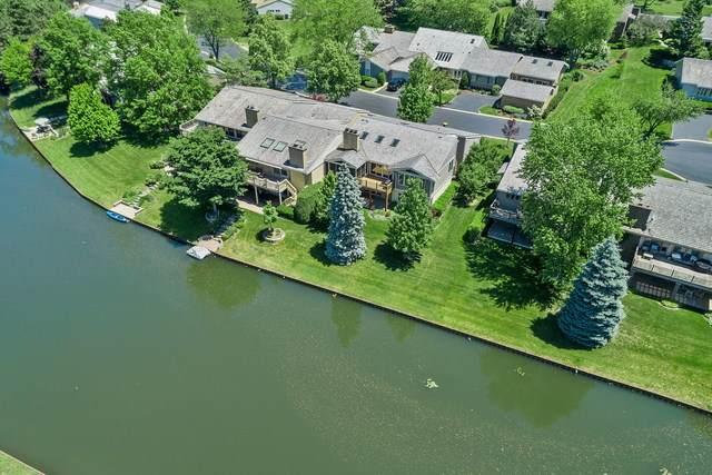 64 Briarwood Lane, Oak Brook, IL 60523 (MLS #10782098) :: Littlefield Group