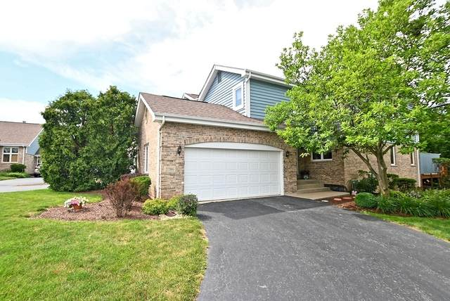 17386 Brook Crossing Lane, Orland Park, IL 60467 (MLS #10782339) :: Jacqui Miller Homes