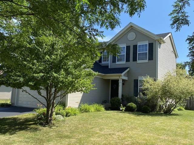 290 Breckenridge Drive, Gilberts, IL 60136 (MLS #10782365) :: Angela Walker Homes Real Estate Group