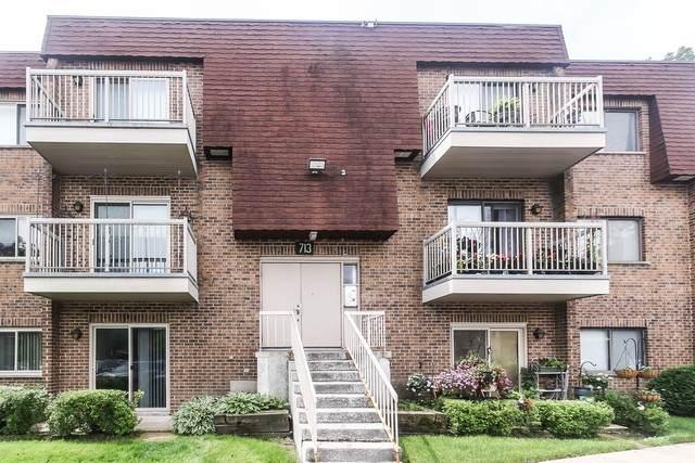 713 W Central Road 4C5, Mount Prospect, IL 60056 (MLS #10782615) :: Angela Walker Homes Real Estate Group