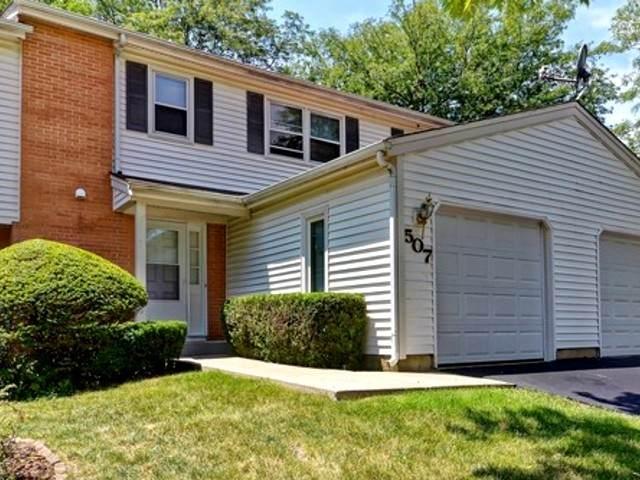 507 Dubois Circle, Bolingbrook, IL 60440 (MLS #10782697) :: John Lyons Real Estate