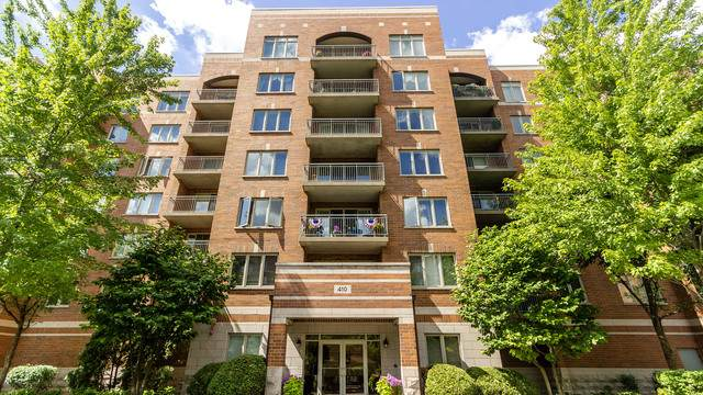 410 S Western Avenue #503, Des Plaines, IL 60016 (MLS #10782797) :: The Mattz Mega Group