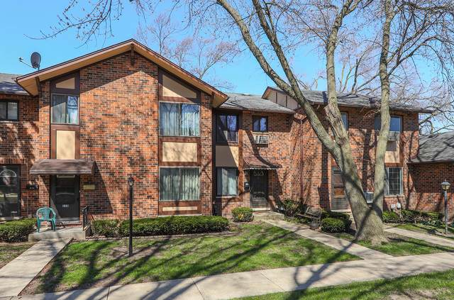 1S218 Dillon Lane, Villa Park, IL 60181 (MLS #10782976) :: Littlefield Group