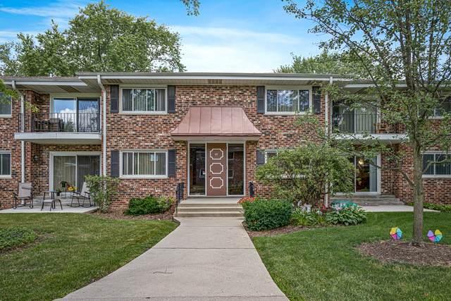41 N Main Street #19, Glen Ellyn, IL 60137 (MLS #10783033) :: Property Consultants Realty