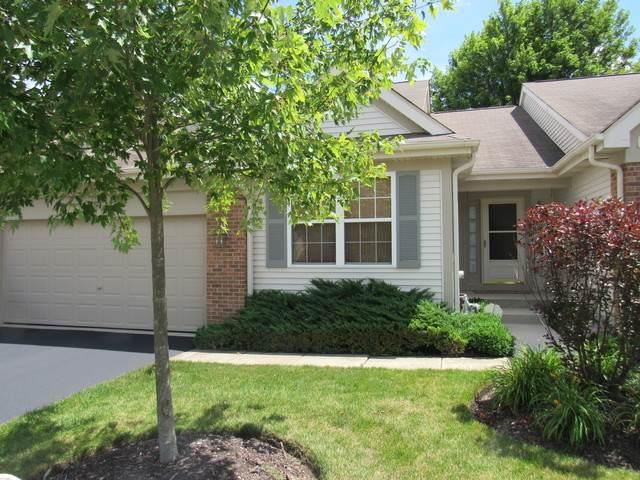 1161 N Oakwood Drive, Fox Lake, IL 60020 (MLS #10783378) :: Littlefield Group