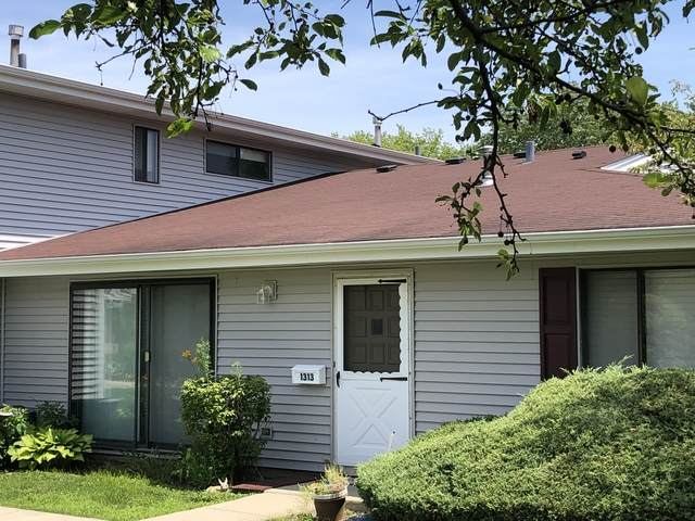 1313 Forestdale Court #562, Schaumburg, IL 60193 (MLS #10783883) :: John Lyons Real Estate