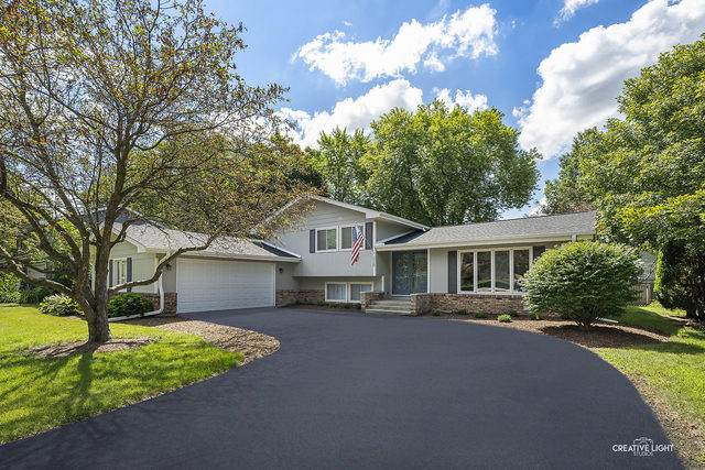 220 Bay Colony Drive, Naperville, IL 60565 (MLS #10784910) :: Littlefield Group