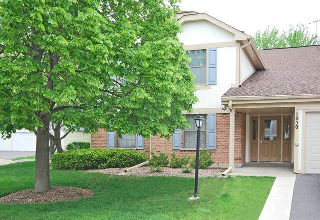 1050 Driftwood Court B2, Wheeling, IL 60090 (MLS #10785409) :: John Lyons Real Estate