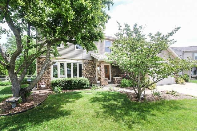 901 E Point Drive, Schaumburg, IL 60193 (MLS #10785727) :: Angela Walker Homes Real Estate Group