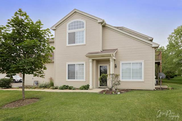 331 N Patriot Drive, Hainesville, IL 60030 (MLS #10786384) :: Littlefield Group