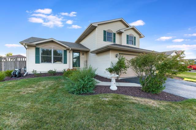 1405 Gilray Drive, Joliet, IL 60431 (MLS #10786465) :: Angela Walker Homes Real Estate Group