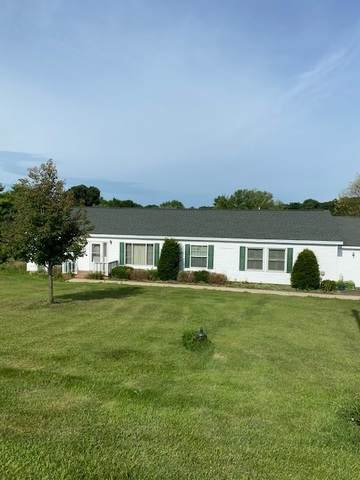 10816 N Leaf River Road, Leaf River, IL 61047 (MLS #10788141) :: Property Consultants Realty