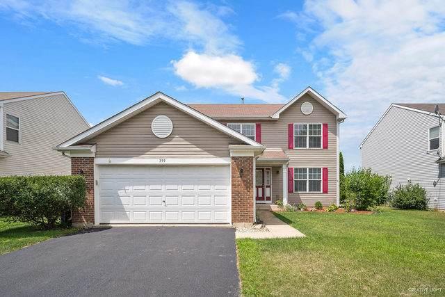 399 Grape Vine Trail, Oswego, IL 60543 (MLS #10788228) :: Angela Walker Homes Real Estate Group