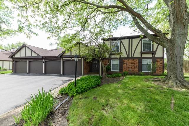 2950 Northampton Drive A1, Rolling Meadows, IL 60008 (MLS #10789330) :: Littlefield Group