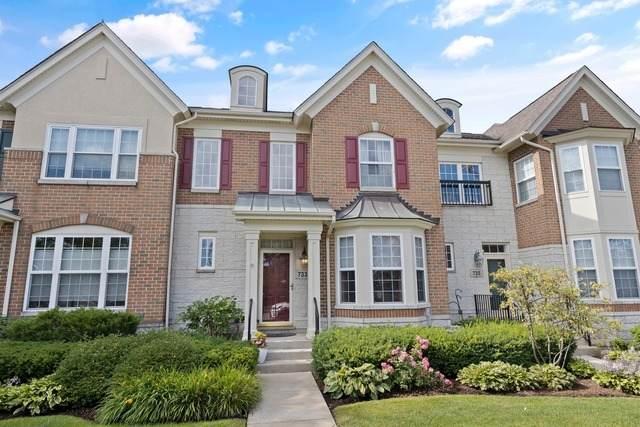733 Central Avenue, Deerfield, IL 60015 (MLS #10789538) :: John Lyons Real Estate