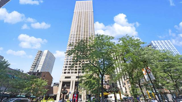1030 N State Street 17D, Chicago, IL 60610 (MLS #10790024) :: Property Consultants Realty