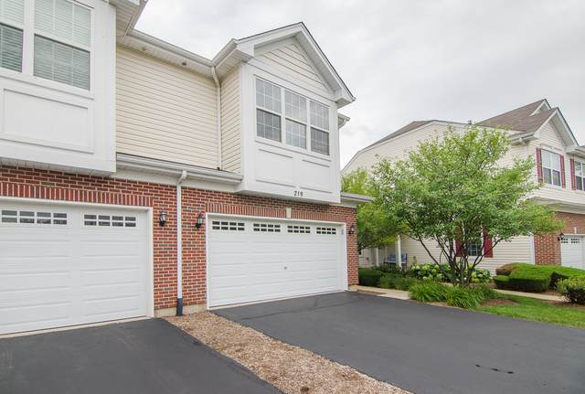 219 S Alder Creek Drive, Romeoville, IL 60446 (MLS #10790367) :: The Wexler Group at Keller Williams Preferred Realty