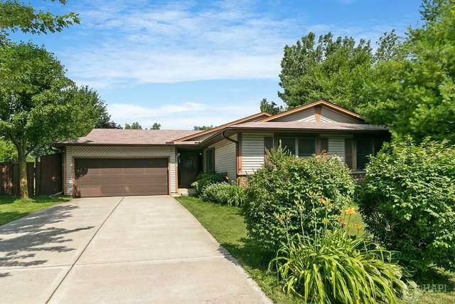 3904 Whispering Trails Drive, Hoffman Estates, IL 60192 (MLS #10790453) :: Lewke Partners