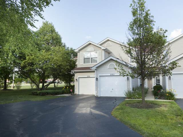 395 Hunterdon Court, Schaumburg, IL 60194 (MLS #10791094) :: The Wexler Group at Keller Williams Preferred Realty