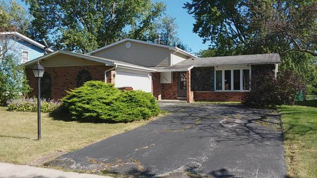 5101 Arquilla Drive, Richton Park, IL 60471 (MLS #10791781) :: Angela Walker Homes Real Estate Group