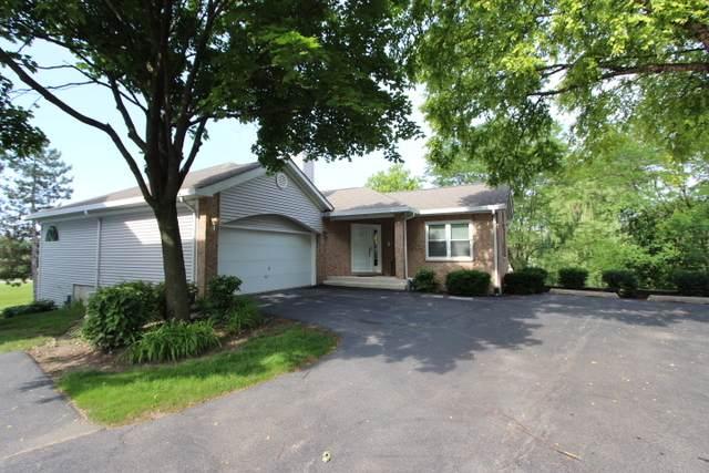 1036 S Parkside Drive, Palatine, IL 60067 (MLS #10792990) :: Littlefield Group
