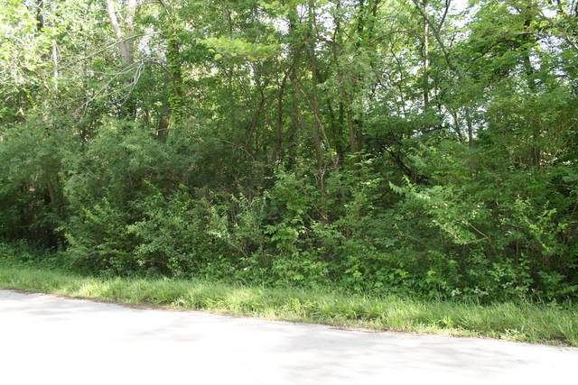 lot 2 Hoberg Drive - Photo 1