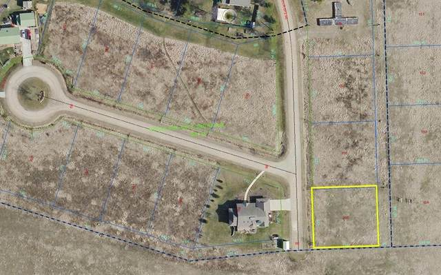 155 Sun Street, Stelle, IL 60919 (MLS #10793363) :: John Lyons Real Estate