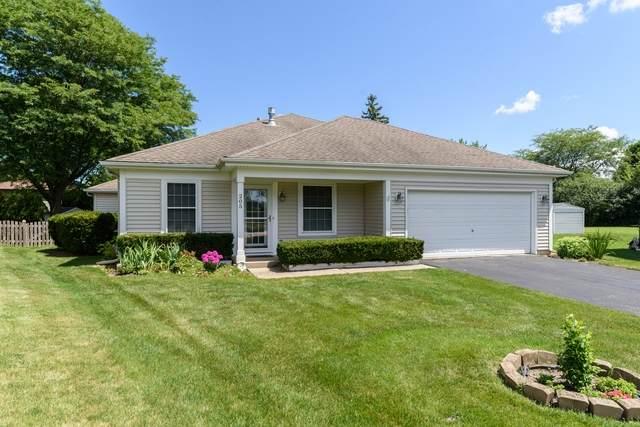 205 Court Of Ash, Vernon Hills, IL 60061 (MLS #10793705) :: Angela Walker Homes Real Estate Group