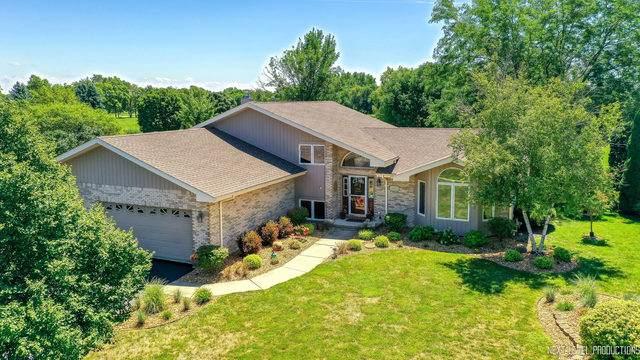 3505 W Nettle Creek Drive, Morris, IL 60450 (MLS #10794916) :: Ryan Dallas Real Estate