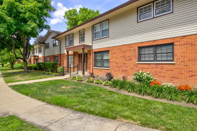 219 Washington Square A, Elk Grove Village, IL 60007 (MLS #10795568) :: Littlefield Group