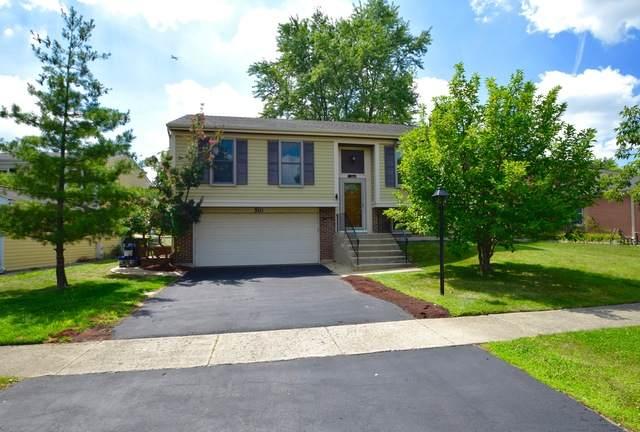 510 Waterbury Lane, Roselle, IL 60172 (MLS #10796178) :: John Lyons Real Estate