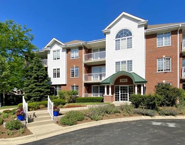 543 N Hough Street #106, Barrington, IL 60010 (MLS #10797776) :: BN Homes Group