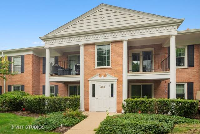 563 Shorely Drive #203, Barrington, IL 60010 (MLS #10797951) :: BN Homes Group
