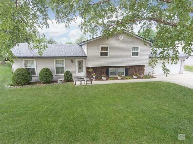 10S524 Windjammer Lane, Naperville, IL 60564 (MLS #10798447) :: Janet Jurich
