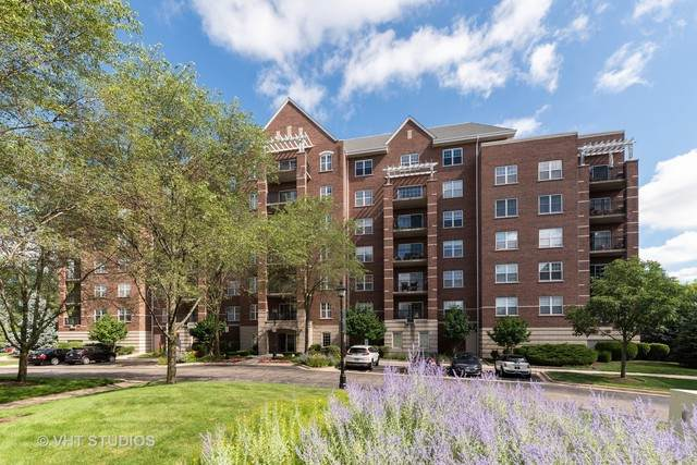 440 W Mahogany Court #309, Palatine, IL 60067 (MLS #10798623) :: John Lyons Real Estate