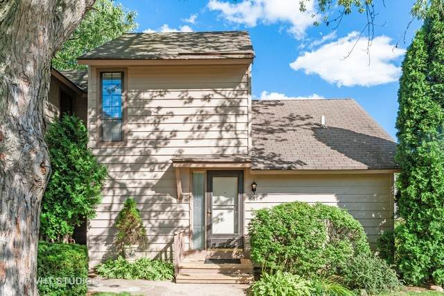 665 Beth Court, Gurnee, IL 60031 (MLS #10799046) :: Property Consultants Realty